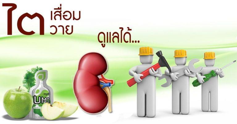 ไตเสื่อม-ไตวาย-ฟอกไต-ไตเรื้อรัง-กินอะไรดี-ผลไม้-ผัก-อาหารเสริม-อะไรดี-เอเจล-umi-agel-ไตเสื่อม-ยารักษาไต-อาหารเสริม-บำรุงไต-อาการ-โรคไต-หายได้ไหม-อาการ-โรคไต-รักษาได้ไหม-รักษาหายไหม-ยารักษาโรคไต-umi-เห็ดหลินจือแดง-ไข่ขาวผง-อัลบูมิน